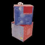 packaging-scatola_eni_raffaello2